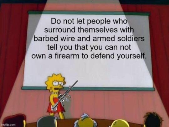 message-lisa-simpson-dont-let-people-surrounded-by-barbed-wire-soldiers-cant-own-firearm.jpg
