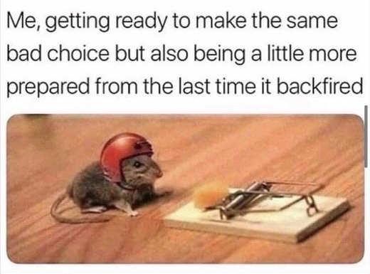 mouse-helmet-mousetrap-bad-decisions.jpg