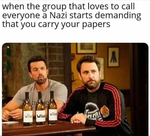 when-group-calling-everyone-nazis-demanding-you-carry-papers.jpg